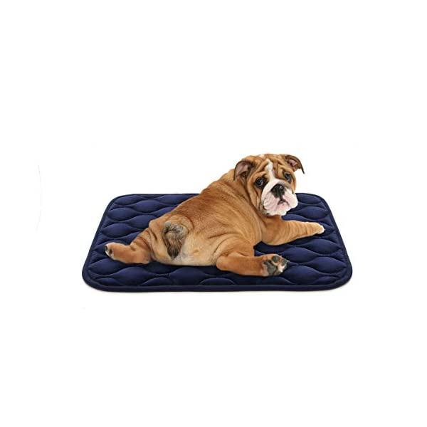 AIPERRO Dog Crate Pad Washable Dog Bed Mat Dog Mattress 30/36/42/46 Pets Kennel Pad for Large Medium Small Dogs and Cats