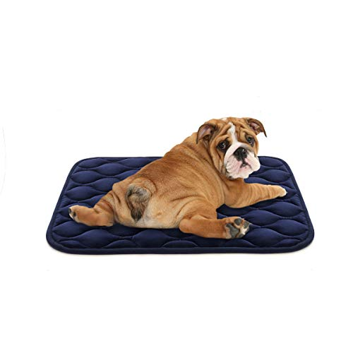 AIPERRO Dog Crate Pad Washable Dog Bed Mat Dog Mattress 30/36/42/46 Pets Kennel Pad for Large Medium Small Dogs and Cats (30 inch, Blue) Beds