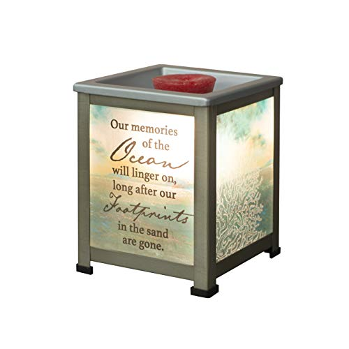 Elanze Designs Memories of Ocean Linger Coral Silvertone Metal Electrical Wax Tart & Oil Glass Lantern Warmer