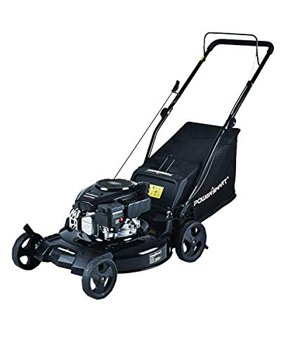 which is the best gas push mowers in the world