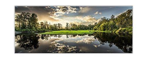 STYLER EX210 Glasbild, Glas, grün, 0.4 x 125 x 50 cm