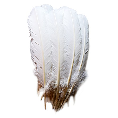 Everyshine 120 Pcs Turkey Quill Feathers 10-12 inches White