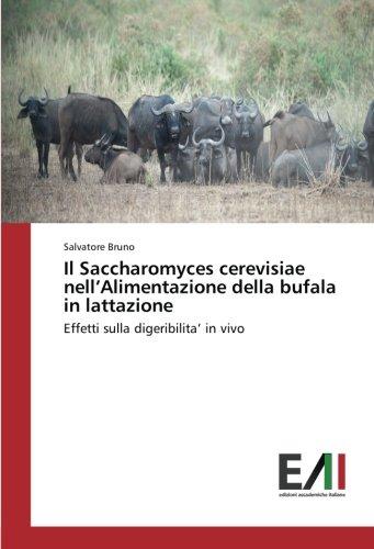 Il Saccharomyces cerevisiae nellAlimentazione della bufala in lattazione: Effetti sulla digeribilita in vivo (Italian Edition)