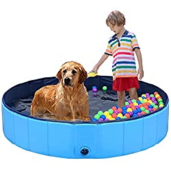 Review For Szc Hard Plastic Kiddie Pool Foldable Dog Baby Swimming Pool Portable Large Dogs Pool For Kids