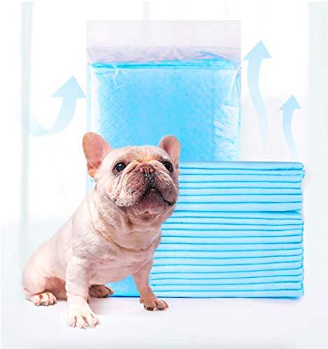 Nifogo Hygieneunterlagen für Haustiere,Welpen Trainingsunterlagen,saugstarke Hunde-Pads,Welpentoilette für Zuhause,Welpenunterlagen,Training Pads (50Stück, 60 * 60cm)