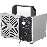 SWTY 10 g Ozongenerator limpiador pequeño Haushalts-Ozonmaschine Acero inoxidable purificador de aire filtro de aire desinfección esterilización limpieza formaldehído