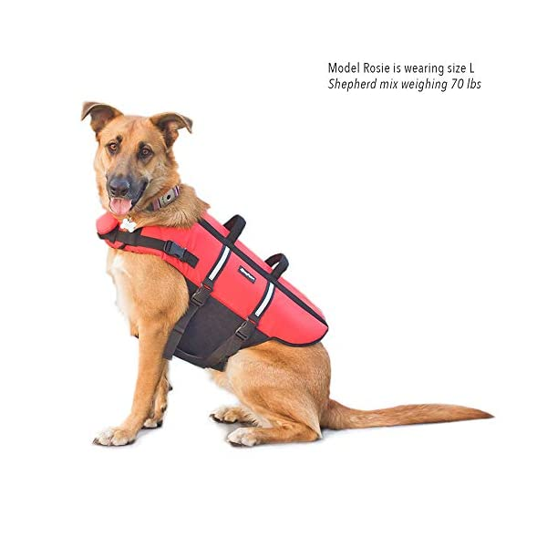 Zippy Paws Life Jacket Dog, Red, Small Click on image for further info. 8