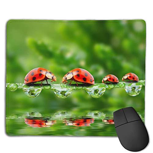 Alfombrilla de ratón portátil para Juegos Ladybug Green Back Base Antideslizante cómoda Bordes cosidos duraderos para computadora portátil