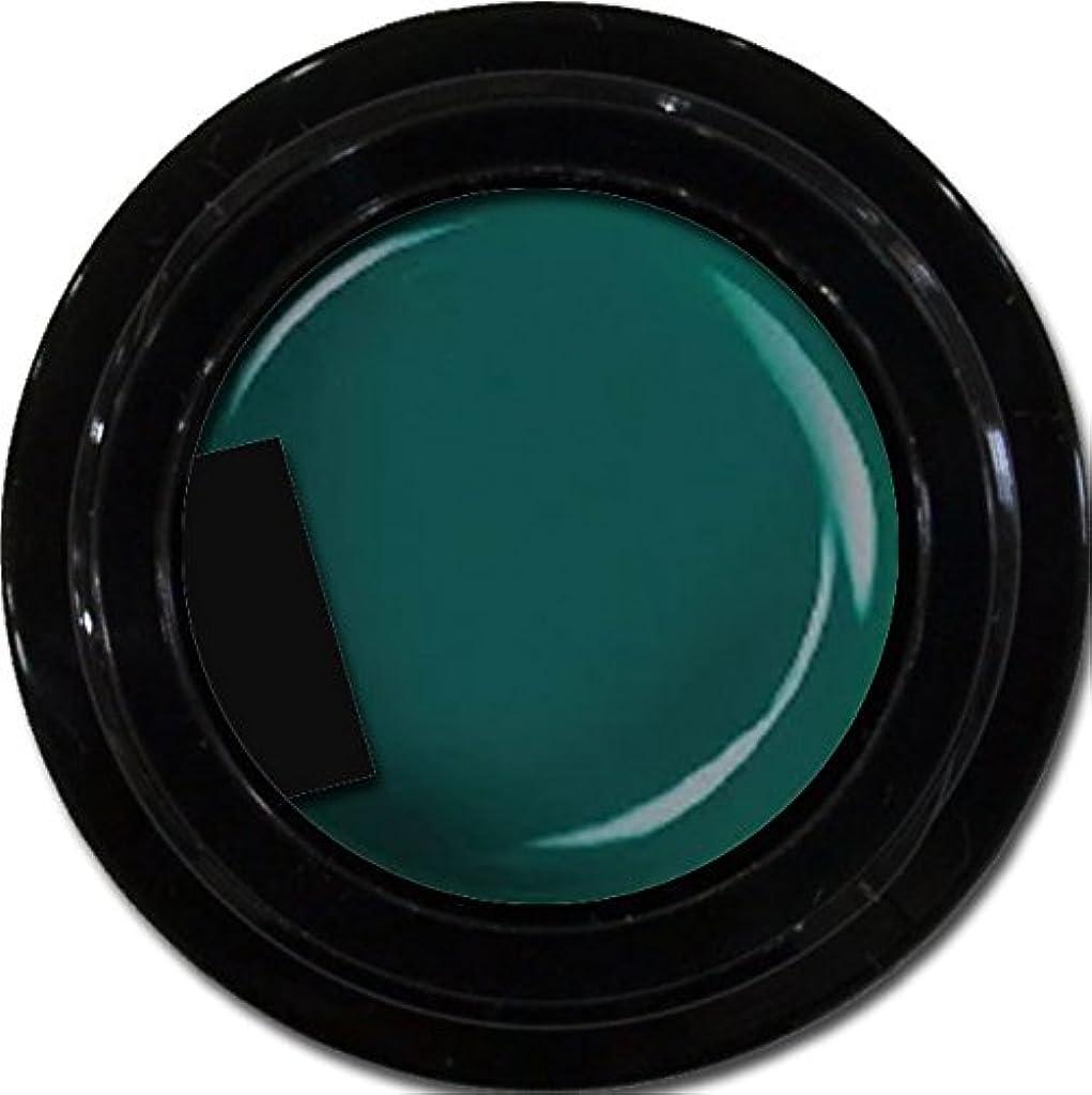 シートフレームワーク処方カラージェル enchant color gel M713 Olive 3g/ マットカラージェル M713 オリーブ 3グラム