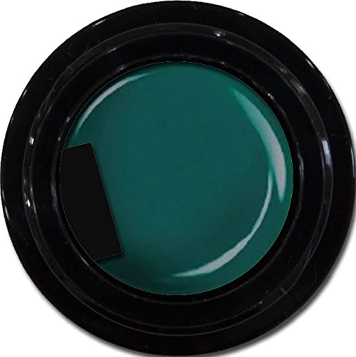 伝記メタリック大気カラージェル enchant color gel M713 Olive 3g/ マットカラージェル M713 オリーブ 3グラム