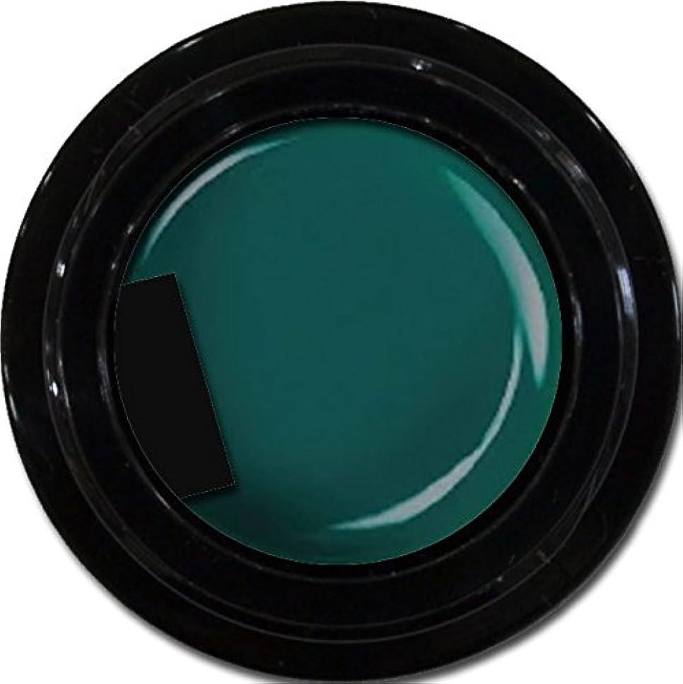 眠る上げる授業料カラージェル enchant color gel M713 Olive 3g/ マットカラージェル M713 オリーブ 3グラム