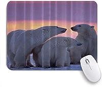 KAPANOUマウスパッド ホッキョクグマの家族の動物アート ゲーミング オフィス最適 高級感 おしゃれ 防水 耐久性が良い 滑り止めゴム底 ゲーミングなど適用 マウス 用ノートブックコンピュータマウスマット