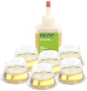 Beapco 10036 Pre-filled Fruit Fly Trap, Pack of 6, clear, 20 in