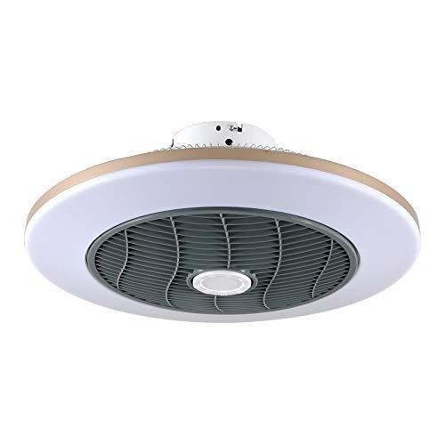 LED-Deckenventilator Moderne Intelligente Decke Schlafzimmer Fan Licht Fernbedienung Heizung Und Kühlung Frequenzumwandlung Haushalt Wohnzimmer Fan Licht Lüfter-Deckenlicht (1#,Warm and Cold Wind)