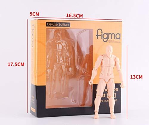 Figma Body Kun & Body Chan Deluxe Edition Gewrichten Beweegbare Action Figure Model Toys for Gift, Hij vlees met doos