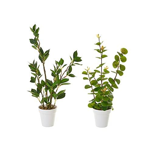 Set de 2 Plantas Artificiales con Maceta Blancas y Verdes de plástico - LOLAhome