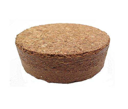 Boulettes gonflants à la noix de coco d'environ Ø 60 mm, 100 pièces (EUR 0,35 / pièce), terreau sans tourbe à base de fibres de coco pressées, rendement d'environ 400 ml par boulette
