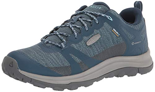 KEEN womens Terradora 2 Waterproof Low Height Hiking Shoe, Tapestry/Blue Glow, 8 US