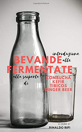 Introduzione alle bevande fermentate: alla scoperta di kombucha, kefir, tibicos e ginger beer