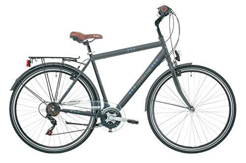 Frank Bikes 28 Zoll Herrenrad Herren City Jugend Citybike Trekking Fahrrad Herrenfahrrad Cityrad CITYFAHRRAD Central Park 6 Shimano Gang Grau