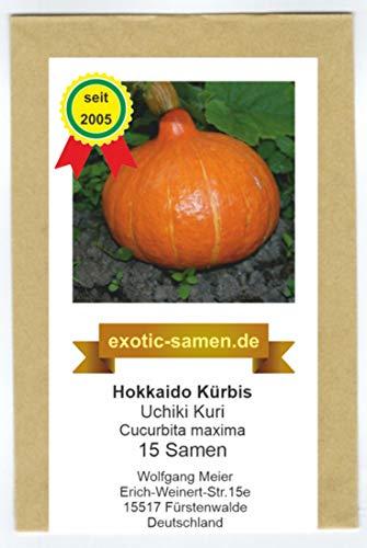 Hokkaido Kürbis - Uchiki Kuri - tolle Züchtung - 15 Samen