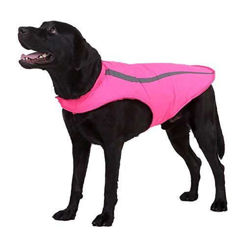 CHIYEEE Hond Jas Huisdier Outdoor Indoor Activiteiten Jas Waterdichte Winddicht Reflecterende Koud Weer Winter Vest voor Grote Hond M