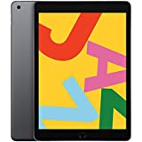 Apple iPad (10.2-inch, Wi-Fi, 32GB) - Space Gray (Latest Model)