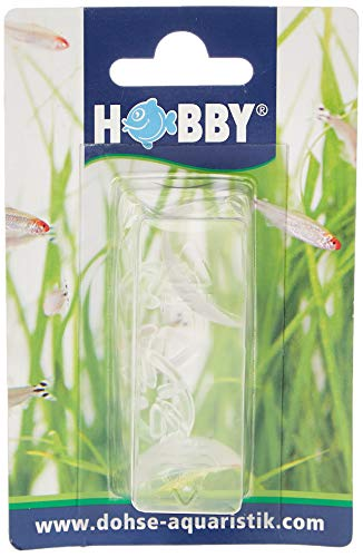 Hobby 62201 - Ventosa per riscaldatore, 2 pezzi, SB