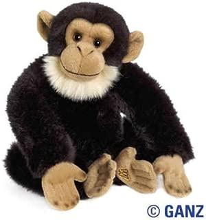Best webkinz signature chimpanzee Reviews