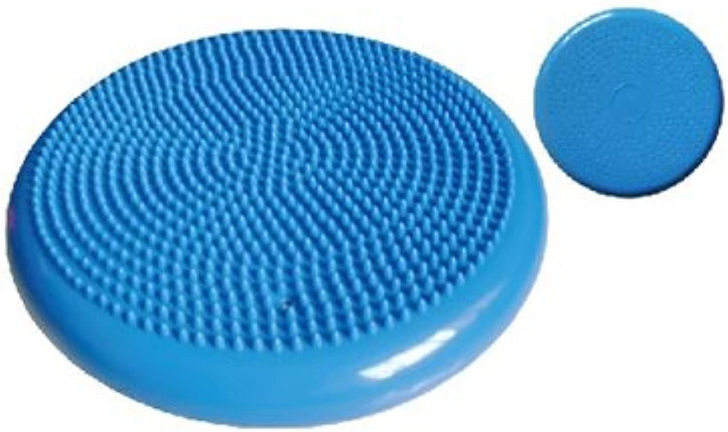 Therapist's Choice Inflated Air-Filled Stability Balance Disc-blueee