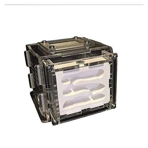 ZOUJIANGTAO DIY Acrílico Flat Farm Nest Hidratante Worm Ecología Caja Educativa Ciencia Juguete para Niños Adultos Cumpleaños Regalo (Color : Black, Size : 8.5x9x7.5cm)