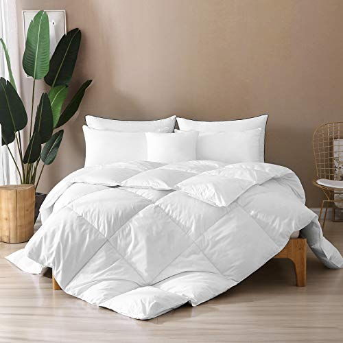 BPC Queen Size Down Comforter - Goose Duck All Season Down Comforter with 100% Filling Nature Down and Feather and 100% Cotton Cover - Duvet Insert or Stand-Alone Down Comforter