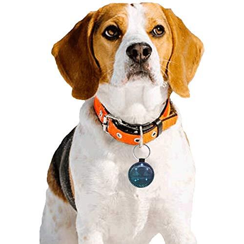 Haustier-ID-Tags für Hunde Personalisierte Sternbild Sternzeichen Waage Tags für Katzen Haustier-ID-Tags Personalisierte doppelseitige runde Mikrofaser Leder Einzigartige Designs für Hundekatze