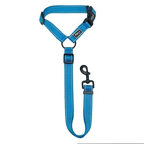 Didog Dog Vehicle Car Seat Belt Harness for Car Travel,Adjustable Dog Leashes Fit Small Medium Large Dogs,Blue