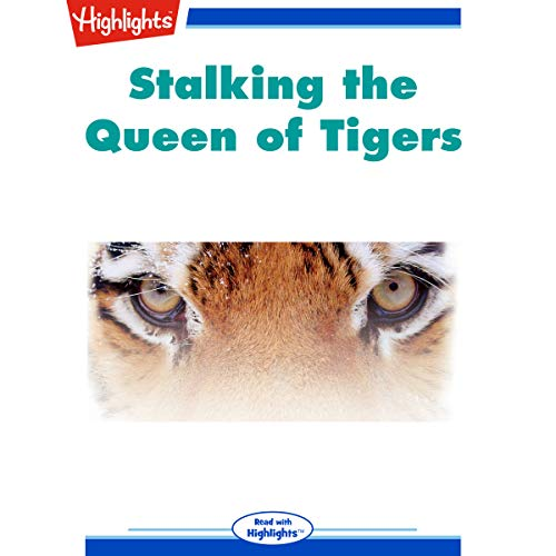 Stalking the Queen of Tigers copertina