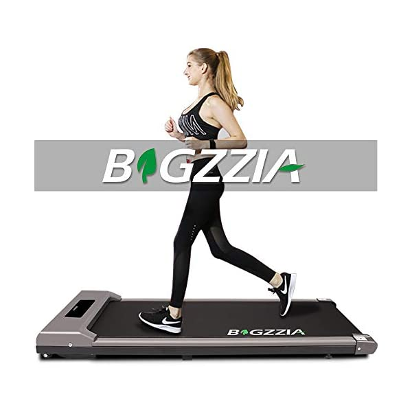 Bigzzia treadmill