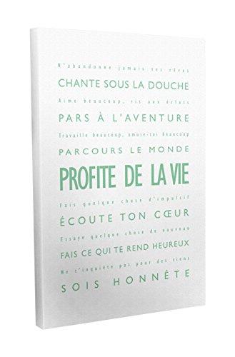 Feel Good Art Profite de la Vie Toile sur Cadre Mural de Style Moderne/Typographique Vert Pâle/Blanc 40 X 60 cm