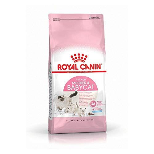 Royal Canin/Babycat sac de 4 kg croquettes pour chaton de 1 à 4 mois