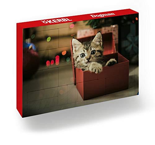 Hauptner Premium Adventskalender Katze - Weihnachtskalender für Katzen-Fans mit 24 praktischen Geschenken für Katze & Mensch