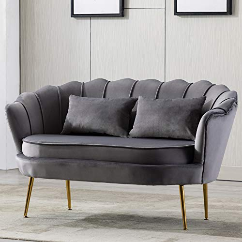 Modern Velvet Double Loveseat Sofa Couch,2 Seater Sofa Upholstered Tub Chair with Golden Metal Legs,Occasional Lounge Chair for Living Room,Bedroom,Home Office,Reception