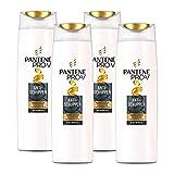 Pantene Pro-V Anti-Schuppen Shampoo für Alle Haartypen