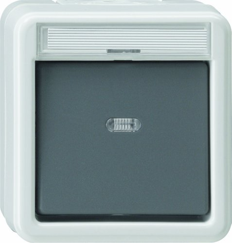 Gira 011630 Wippschalter Kontroll Wechsel Wassergeschützt Aufputz, Grau,Weiß