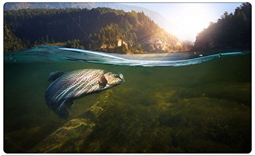 Fisch Angeln Forelle Natur Wald Wandtattoo Wandsticker Wandaufkleber R1021 Größe 70 cm x 110 cm