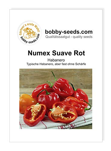 Numex Suave Rot Chili- Peperonisamen von Bobby-Seeds, Portion