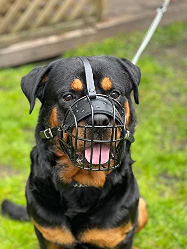 Fuerte alambre metal bozal cesta perro bozal Rottweiler, Mastín Golden Retriever y otros (R3, cuero negro/negro)
