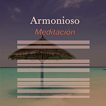 # 1 Album: Armonioso Meditación