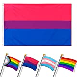 Bandera Orgullo Gay, Bandera de Arcoiris Orgullo Gay LGBT, Bandera Bisexual, Bandera LGBT Grande con 2 Ojales Metálicos, Utilizada para Desfiles Al Aire Libre, Fiestas, Decoraciones, 150 * 90cm
