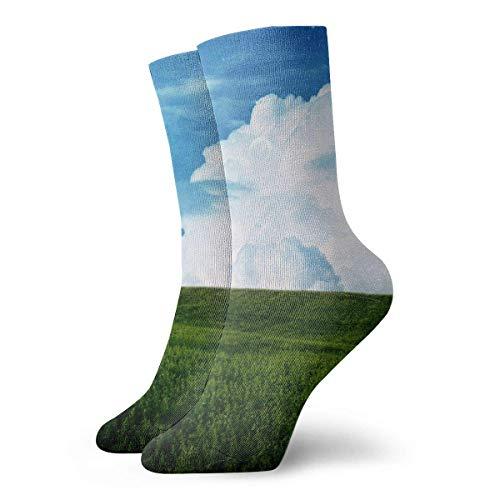 Drempad Luxury Calcetines de Deporte Dream Field Blue Sky Adult Short Socks Cotton Sports Socks for Mens Womens Yoga Hiking Cycling Running Soccer Sports