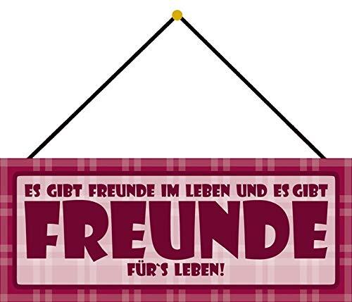 Schatzmix Blechschild Es Gibt Freunde im Leben Metallschild Wanddeko 27x10cm mit Kordel Señal metálica, hojalata, Multicolor, 27x10 cm