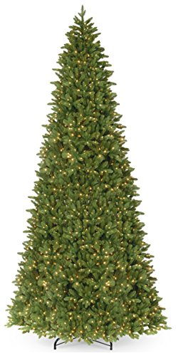 National Tree Company 'Feel Real' Pre-lit Artificial Christmas Tree | Includes Pre-strung White Lights and Stand | Ridgewood Spruce Slim - 14 ft